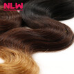 N.L.W. 10A Brazilian virgin human hair 3 bundles Body wave hair extensions Ombre T1B/4/27 Hair color