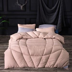 Weizhong was core-spun thickened winter quilt quilt double quilt was core quilt double coffee color 200*230cm 6 kg