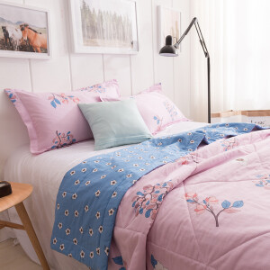 Antarctic people are core cotton textile cotton core skin soft air conditioning quilt cotton summer cool water by Mercury Love 200 * 230cm
