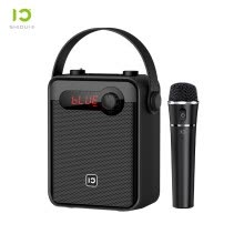 -Ten Degrees (ShiDu) S95 Outdoor UHF Wireless Bluetooth Square Dance Speaker Portable Handheld High Power Small Bee Megaphone Mini Radio MP3 Digital Song Classic Black on JD
