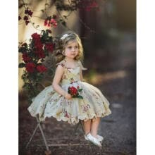 -Cute Toddler Kids Baby Girls Flowers Party Pageant Lace Tutu Tulle Dress Summer on JD