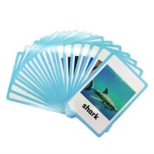 educational-toys-20 pc- Sea Animals Flash Cards-English word learning card&pocket size flash card for Preschool children-English Vocabulary Cards on JD
