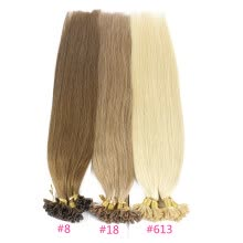 fusion-hair-extensions-Iwona 100% Brazilian Virgin Remy Hair Straight Nail Tip 1g/s 100g Human Hair on JD